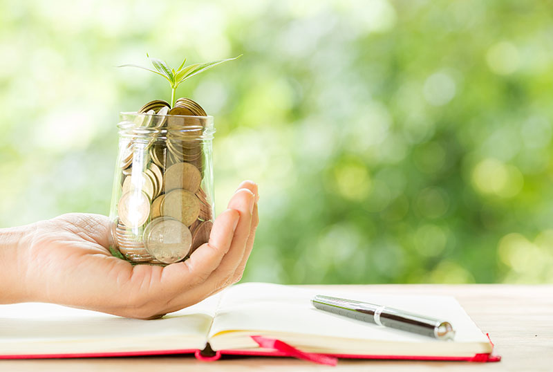 Man holding glass jar of coins in palm and a sapling emerging from it